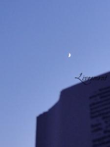 Rond de Sorciere 36 livre lune