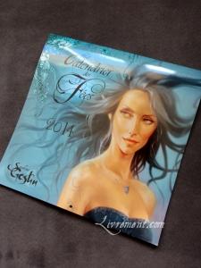 Calendrier des fees 2014 Sandrine Gestin