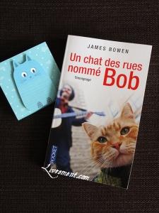 Un chat des rues nomme Bob James Bowen lecture